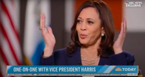 Harris on the Border Crisis:¯\_(ツ)_/¯